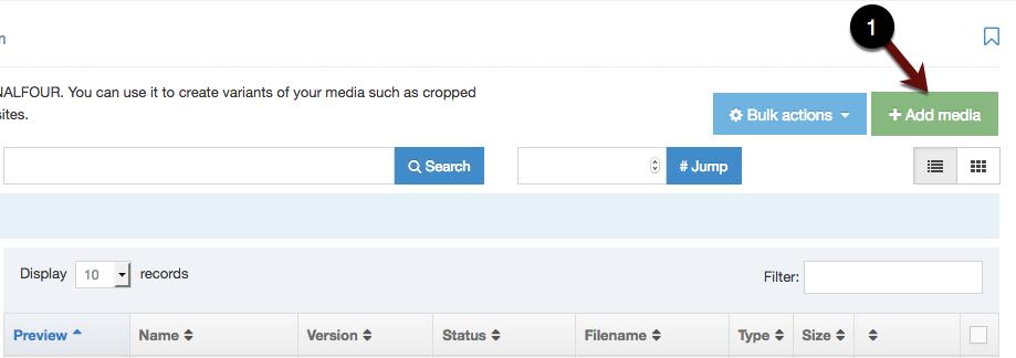 + Media Button screenshot