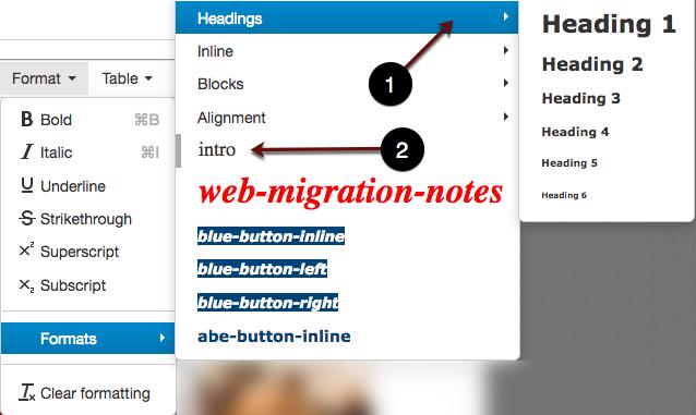 Formats menu drilldown screenshot