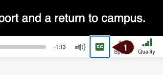 Image of the automatic captions button in a panopto video