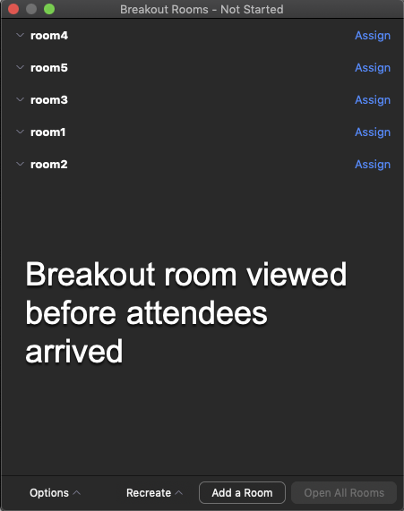 image of breakout rooms viewed before attendees have arrived.