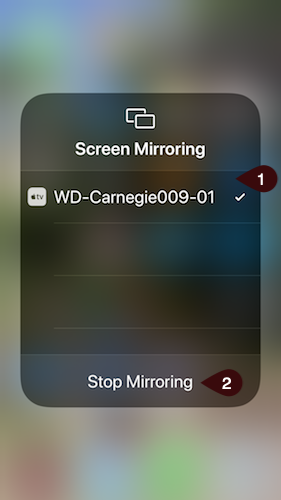 Successful connection and Stop Mirroring example screen